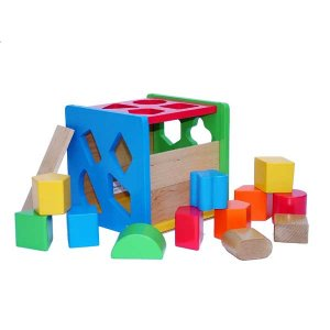 Activity Block Shape Sorter