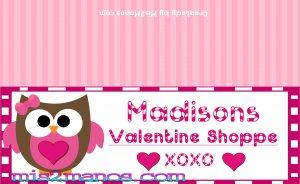 Owl Valentine's Treat Bag Topper- Owl Loves Candy Shop Set of 12