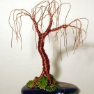 Oak Bonsai - wire tree sculpture, by Sal Villano