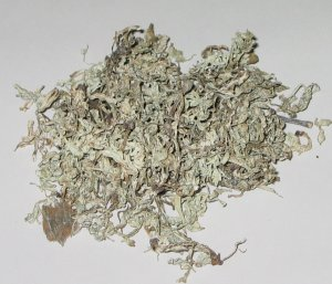 White Tea, yields about 5 dozen Allergy free Vet-Approved