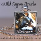 "Wolf mix cub pup B&W gray nature lover GIFT 1"" glass tile metal pendant necklace"