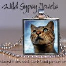 "Orange Marmalade Cat Kitten Blue grey eyes 1"" Glass Tile Metal Pendant Necklace"