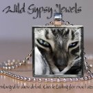 "Grey Cat sweet cute KITTEN Aqua Blue Eyes 1"" Glass Tile Metal Pendant Necklace"