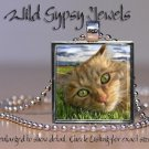 "Orange Tabby Cat KITTEN green Eyes lounging 1"" Glass Tile Metal Pendant Necklace"