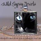 "Cat sweet cute black white KITTEN blue Eyes 1"" Glass Tile Metal Pendant Necklace"