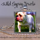 "Pop Art White English bulldog Bully 1"" glass tile square metal pendant necklace"