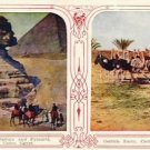 Dual View CAIRO EGYPT Vintage Postcard VP-6237
