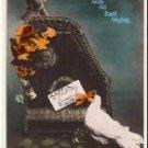 Tinted DOVES Vintage Birthday Postcard VP-4272