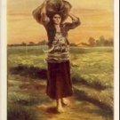 The Shepherd's Star Vintage Greeting Postcard VP-4364