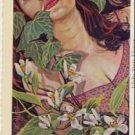 IDAHO State Flower Glamour Gal Postcard VP-6061