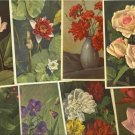8 GREETING postcards LOVELY FLOWERS SWITZERLAND-L541