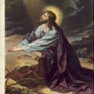 JESUS in Gethsamane Vintage Relgious Postcard VP-4979