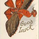 Lucky Rabbit's Foot Vintage Greeting Postcard VP-578