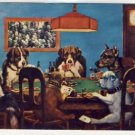 Classic Dogs Playing Poker Comic/Humor Postcard VP-6039
