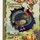 Gorgeous Vintage Thanksgiving Postcard Turkey  VP-224