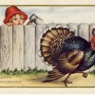 Boy w/Ax & Turkey Vintage Pop up Postcard VP-6604