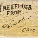 Greetings from WOOSTER OHIO Embossed Postcard VP-6023