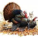 WiLd Turkey Pair Cross Stitch Pattern***L@@K***