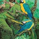 Big Golden Blue parrots Cross Stitch Pattern***L@@K***