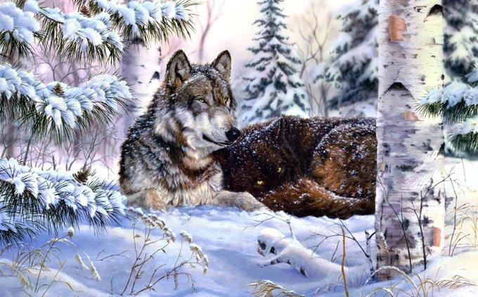 Winter Wolf Cross Stitch Pattern***L@@K***