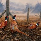 Meadow Mist Pheasants Cross Stitch Pattern***L@@K***