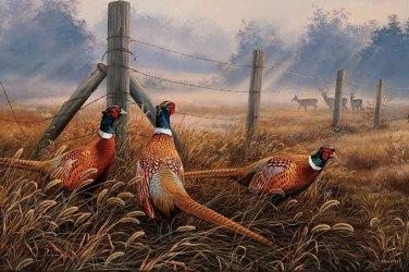 Meadow Mist Pheasants Cross Stitch Pattern***L@@K***