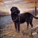 Labrador Retriever Cross Stitch Pattern***L@@K***