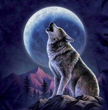 Wolf And Moon Cross Stitch Pattern***L@@K***
