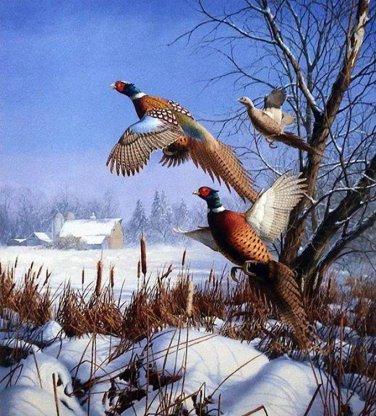 Pheasents In Flight Cross Stitch Pattern***L@@K***