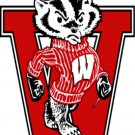 Wisconsin Badger Cross Stitch Pattern***L@@K***