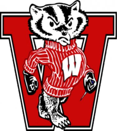Wisconsin Badger Cross Stitch Pattern***L@@K***