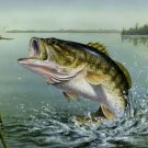 Large Mouth Bass Cross Stitch Pattern***LOOK***