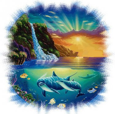 Dolphin Cove Cross Stitch Pattern***LOOK***