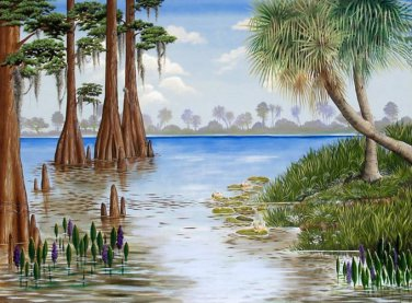 Florida Everglades Cross Stitch Pattern***LOOK***