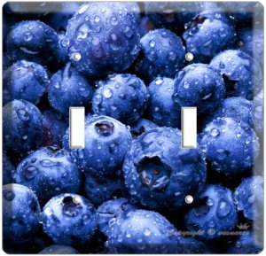 YAMMIE BLUEBERRY KITCHEN DECOR COVER DOUBLE LIGHT WALL SWITCH PLATE