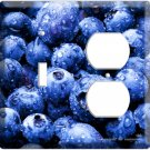 YAMMIE BLUEBERRY KITCHEN DECOR 2 HOLE OUTLET AND SINGLE WALL SWITCH PLATE COVER COMBO