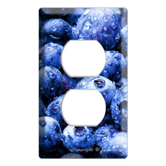 Yammie blueberry kitchen decor 2 hole outlet wall plate cover for Decoration hole