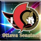 NEW OTTAWA SENATORS NFL HOCKEY DOUBLE SWITCH COVER WALL PLATE COVER