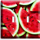RED WATERMELON DOUBLE LIGHT SWITCH WALL PLATE DINING ROOM KITCHEN HOME ART DECOR
