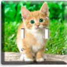 CUTE GREEN EYES KITTEN KITTY CAT DOUBLE LIGHT SWITCH WALL PLATE COVER  ROOM ART