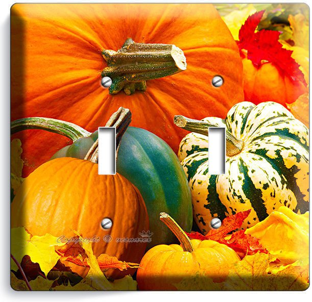 PUMPKINS SQUASH HARVEST DOUBLE LIGHT SWITCH WALL PLATE COVER KITCHEN DINING ROOM