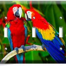 COLORFUL TROPICAL MACAW PARROTS TRIPLE LIGHT SWITCH WALL PLATE COVER HOME DECOR