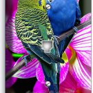 LOVE BIRDS PARROTS ORCHID FLOWERS PHONE JACK TELEPHONE WALL PLATE COVER DECOR