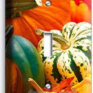 PUMPKINS SQUASH HARVEST SINGLE LIGHT SWITCH WALL PLATE COVER KITCHEN DINING ROOM