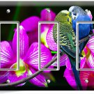 LOVE BIRDS PARROTS ORCHID FLOWERS TRIPLE GFI LIGHT SWITCH WALL PLATE COVER DECOR