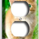 CUTE GREEN EYES KITTEN KITTY CAT DUPLEX OUTLET WALL PLATE COVER ROOM HOME DECOR