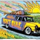 GOV'T MULE SUMMER U.S. 2010 TOUR POSTER