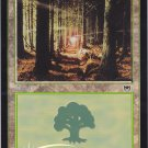 FOIL Forest 349 (MTG) - Near Mint