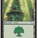 Forest 305 (MTG) - Near Mint