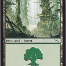Forest 306 (MTG) - Near Mint